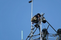 Mounting the new antenna to the sector arm.